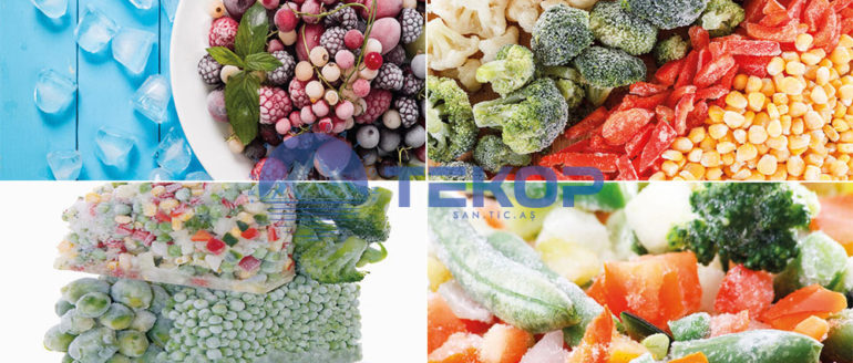 Frozen Foodstuff Storages And Cooling Systems