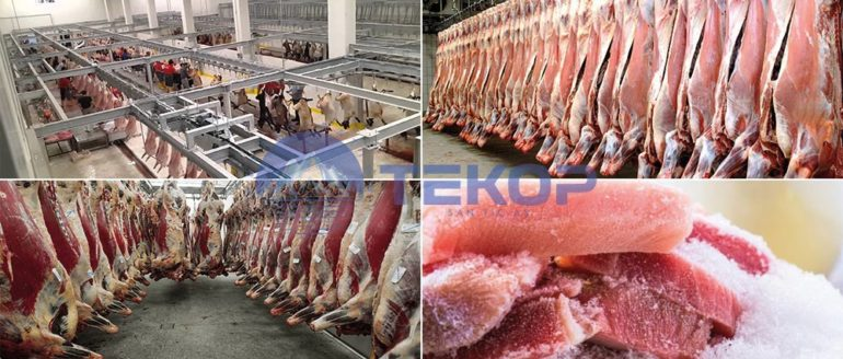 Meat and Meat Products Refrigeration Systems
