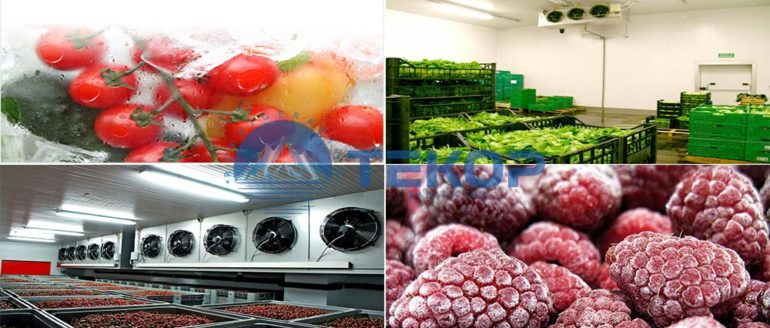 Fruits and Vegetables Cold Storage Rooms