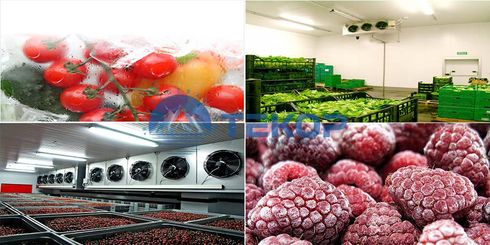 Fruits and Vegetables Cold Storage Rooms, Fruits Cold Rooms, Vegetables Cold Warehouses